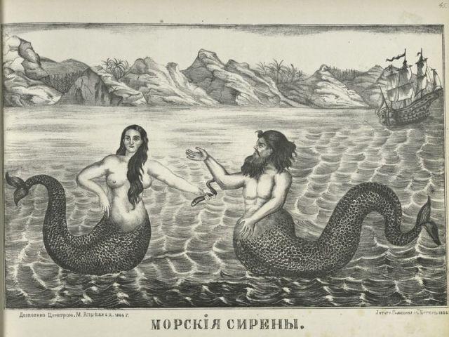 morskiia sireny