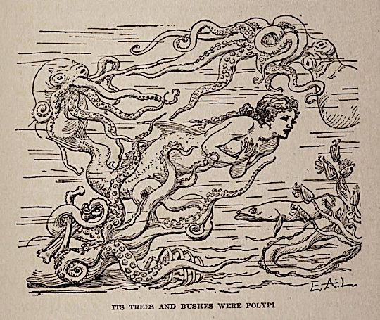 "Polypi ~ ""Hans Andersen's Fairy Tales"" ~ 1911 ~ Eduard Alfred Lehmann Wittenberg.jpg"