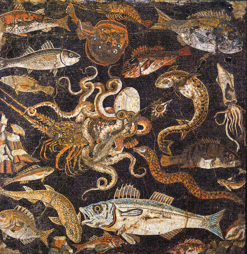 Mosaic from the impluvium of the House of Gometric Mosaics, Pompeii.jpg